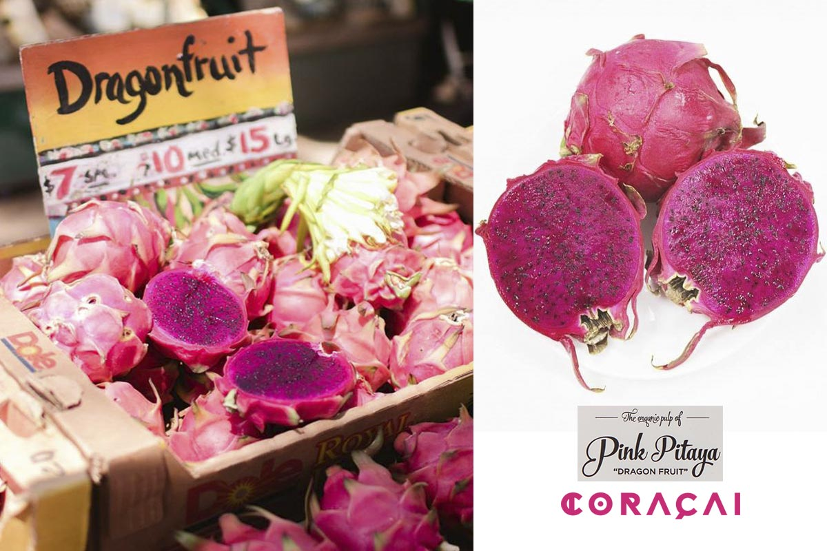 pitahaya rosa dragon fruit