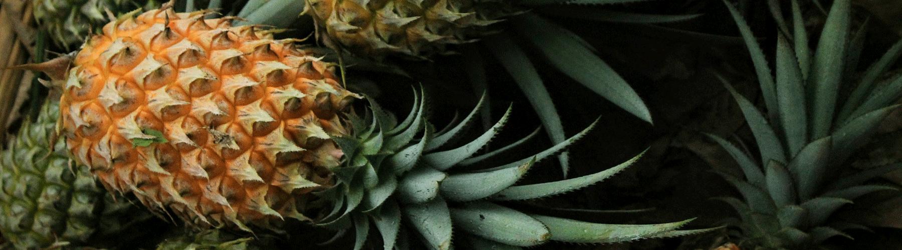 piña congelada