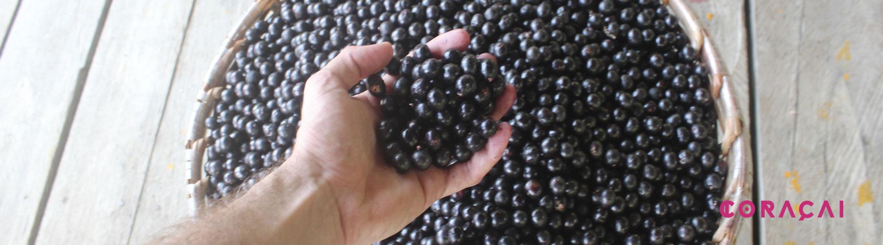 açai fruta orgánica